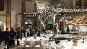 Abendessen mit Dinosaurier im Naturkundemuseum Berlin